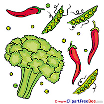 Veggies Broccoli Peppers free Cliparts for download
