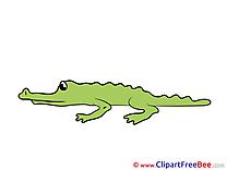 Alligator Clipart free Illustrations