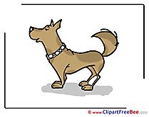 Animal Dog Pics free Illustration