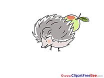Apple Hedgehog Clipart free Image download