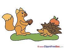 Apple Hedgehog Squirrel Pics download Illustration