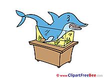 Aquarium Shark printable Illustrations for free