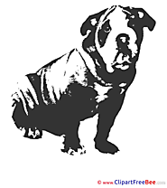 Black Dog free Cliparts for download