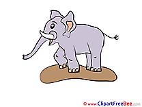 Clipart Elephant  free Illustrations