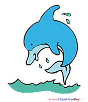 Dolphin Clip Art download for free
