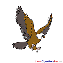 Eagle free Cliparts for download