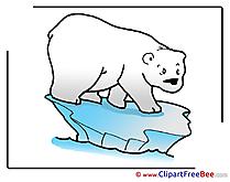 Floe Polar Bear Cliparts printable for free