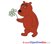 Flower Bear Clipart free Illustrations
