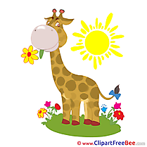 Giraffe free Cliparts for download