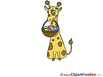 Giraffe Pics free download Image