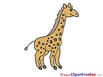 Giraffe printable Illustrations for free