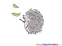 Leaves Hedgehog download Clip Art for free