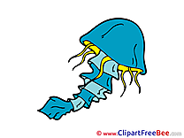 Medusa Clipart free Illustrations