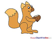 Nut Squirrel Clipart free Illustrations