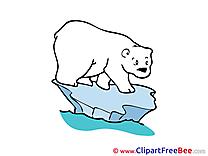 Polar Bear Cliparts printable for free