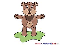 Printable Bear Illustrations for free