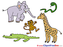 Safari Elephant download Clip Art for free