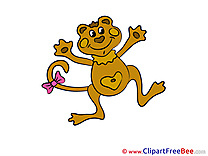 Toad Clipart free Image download