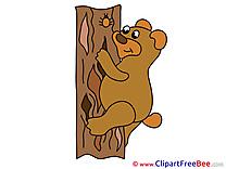 Tree Bear Pics printable Cliparts